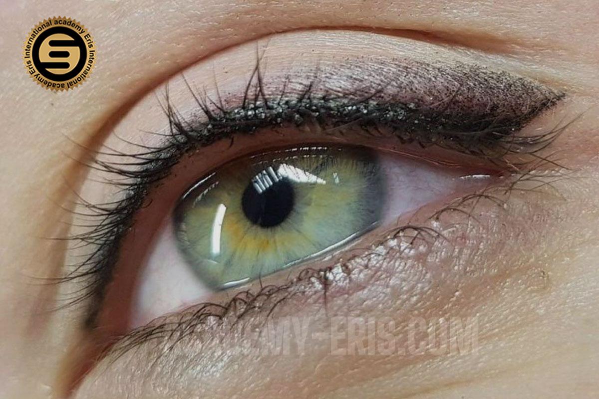 ارتباط بین رنگ پوست و رنگ شیدینگ چشم